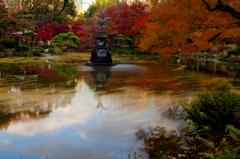 晩秋、鶴の舞