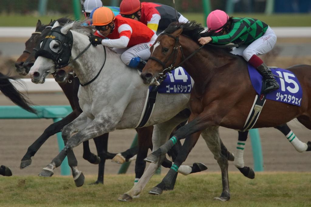2014 有馬記念 ジャスタウェイ ゴールドシップ by nabe0102 (ID:4094627) - 写真共有サイト:PHOTOHITO