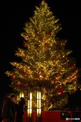 赤レンガ倉庫のツリー