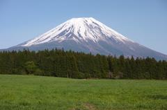 朝霧高原で富士