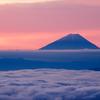 雲海と富士、ピンク空