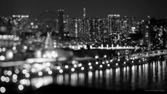 東京夜景BW