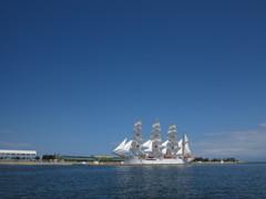夏の帆船海王丸