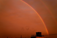 速報! 夕暮れの虹