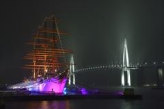 帆船海王丸と新湊大橋