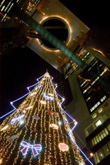 天空のクリスマスツリー