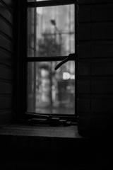 窓の外は…