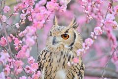 春の再会♪