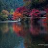 鎌北湖の紅葉その8