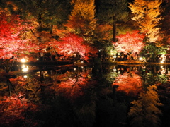 曽木公園1