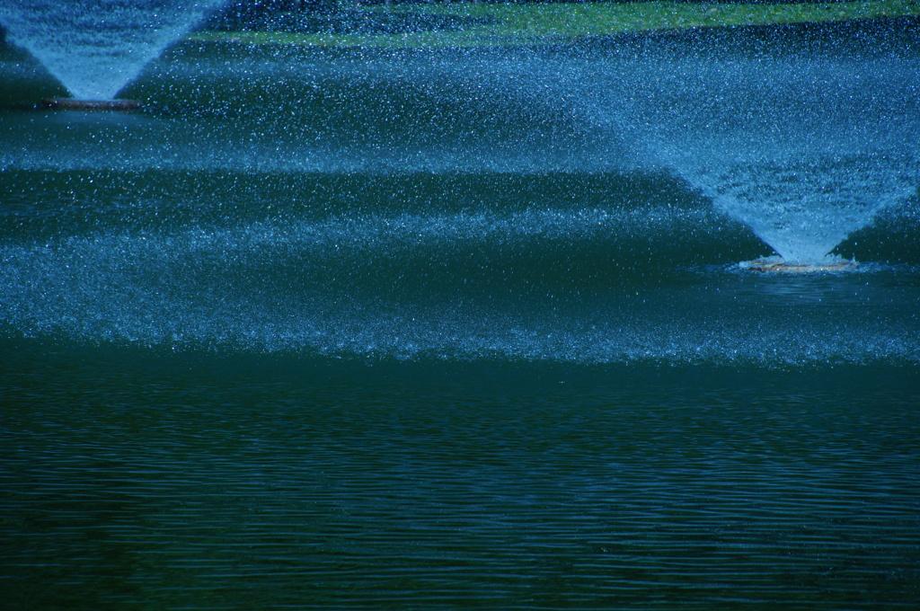 岸辺の水彩