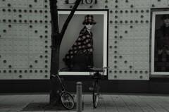 自転車も倒す目力