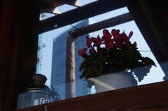窓の外は春