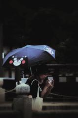 雨のくまモン