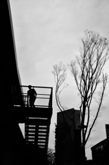 冬空への階段