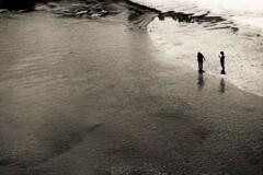 ナイルの岸辺で・・(イメージ)