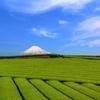 富士と茶畑 -神戸-