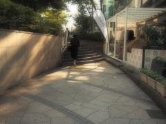 秋日和の表参道