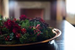 残された真紅の薔薇の花♪