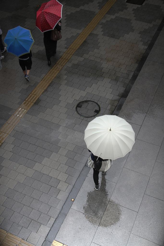 Just Walking In The Rain ♪