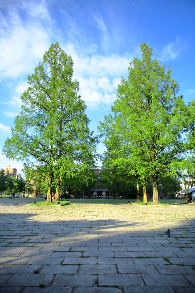 東千田公園