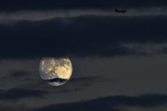 名月と飛行機
