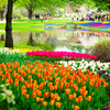 春の園..