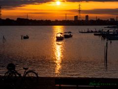 水辺の夕日..