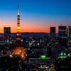 黄昏の東京タワー..