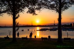 夕日の公園..