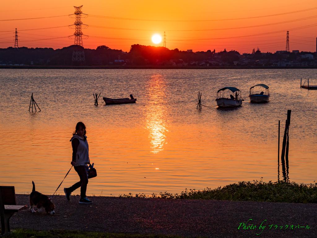 夕日とお散歩..