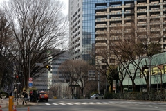 冬の新宿中央公園北交差点
