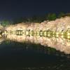 弘前城 さくらまつり