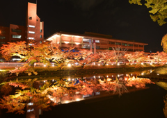 弘前城外堀