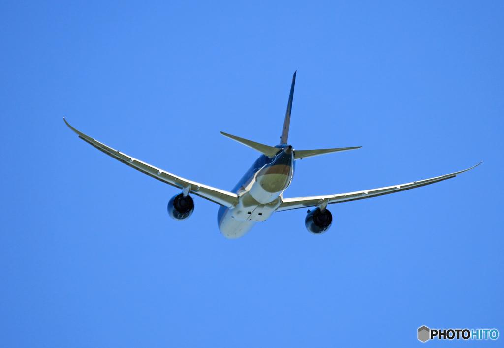 「空色」 Vietnam 787-9 VN-A869 Takeoff