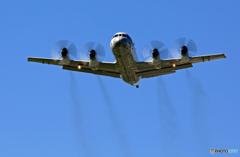 ✈初めての厚木基地(36)..P-3Cをカッコよく撮る会