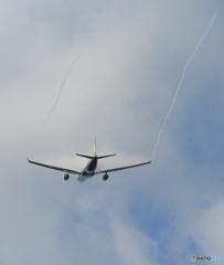 ☮EVA A330 ☮これ、もしかしてベイパーですか?