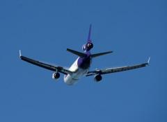 FedEx MD-11 Vapour??