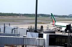 空港 風景(17)着陸・尾翼の所(♪アリのままの~)