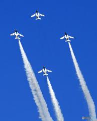 ☮休憩タイム(480)  「青い空」が一番・ぶるー