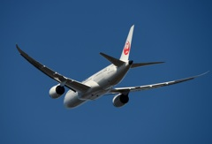 JAL 787-8