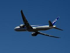 出発 ANA 777-300