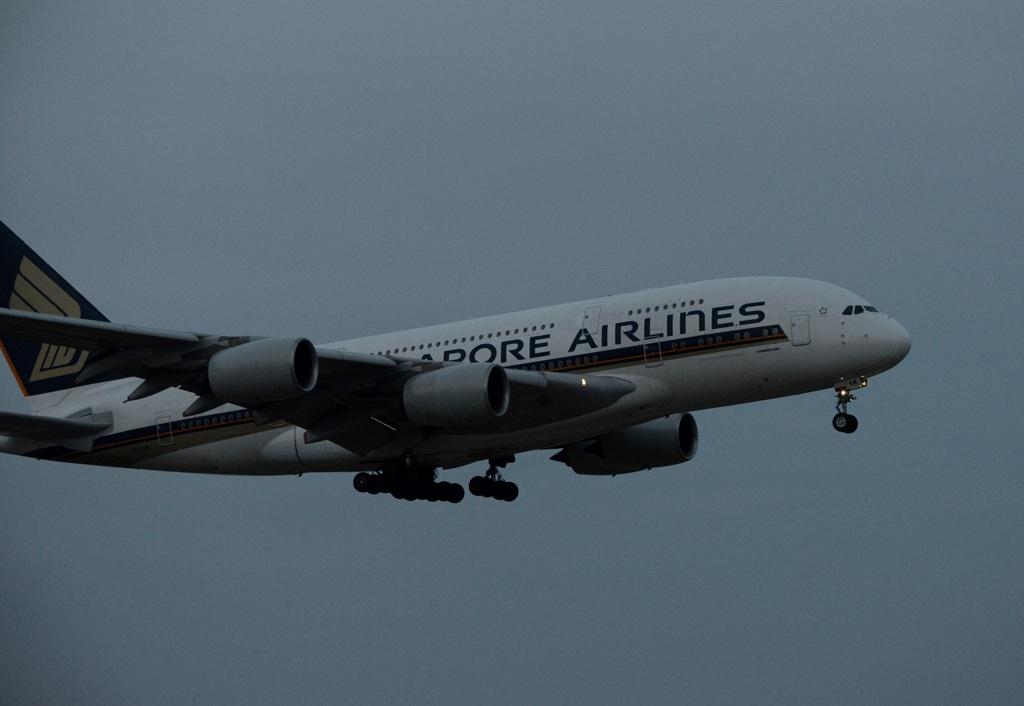 着陸 SINGAPORE A380-841 暗い