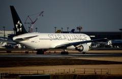 STAR ALLIANCE 767-300