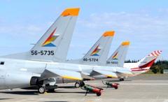 入間航空祭(75)入間 T-4 定番の撮り方です?