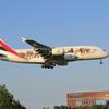 ✈ エミレーツ特別塗装A380 動物愛護機 ✈