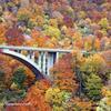 彩の架け橋