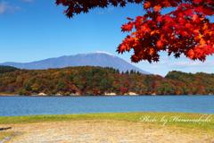みちのく紅葉 - 御所湖