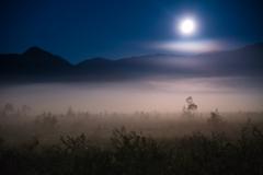 月夜の幻想ステージ