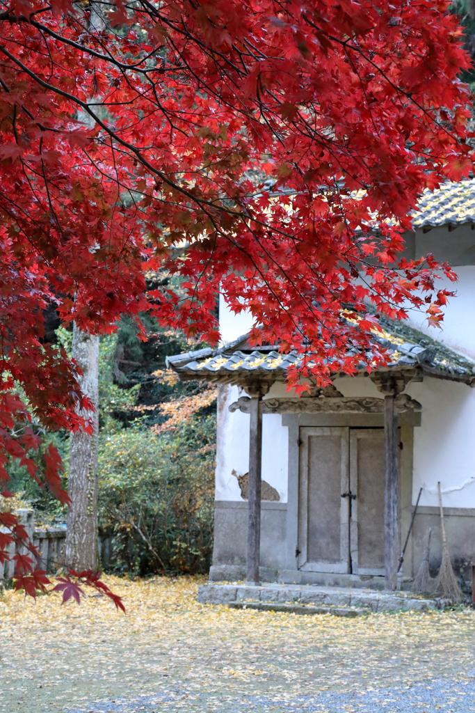 今高野山(3) 201114-339